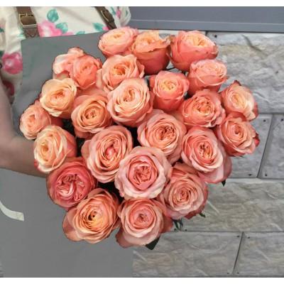 Розы Кахала (Kahala)
