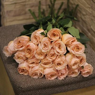 Розы Shimmer (Шиммер)