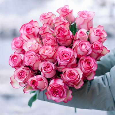 Розы Карусель (Carousel)