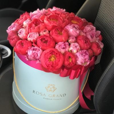 Розовые и коралловые пионы в шляпной коробке