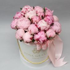 Розовые пионы в шляпной коробке XS/S