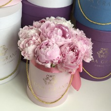 Розовые пионы в шляпной коробке XXS (9 пионов)