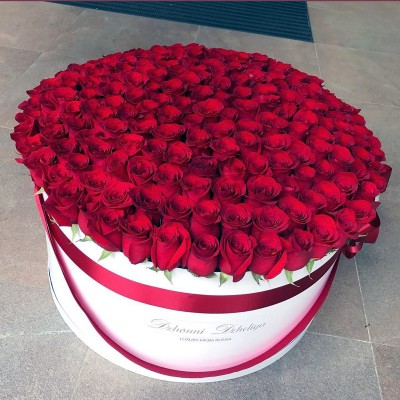 Красные розы в цилиндре (XXL) от 215 роз