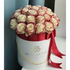 Розы Sweetness в цилиндре (S) 31-35 роз