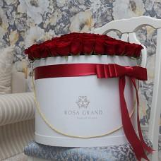 Красные розы в цилиндре (XL) -  101 роза