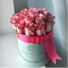 Розовые розы Magic Times в цилиндре (XS) 21-23 розы