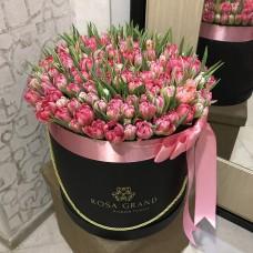 Тюльпаны голландские в шляпной коробке ( L ) до 149 шт.