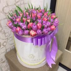 Тюльпаны пионовидные в цилиндре (S) до 69 шт.