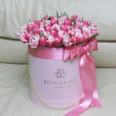 Тюльпаны Ду Коламбус и Ду Чупа-чупс в шляпной коробке (M) до 99 шт.