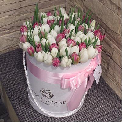 Белые и розовые тюльпаны в цилиндре (S) до 69 шт.