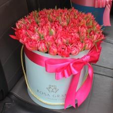 Тюльпаны голландские в шляпной коробке (M) до 99 шт.