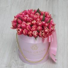 Тюльпаны Ду Колумбус в цилиндре XS (до 49 тюльпанов)