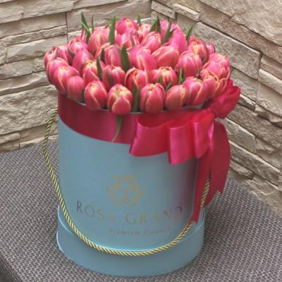 Тюльпанов Ду Коламбус в шляпной коробке (S) до 69 шт.