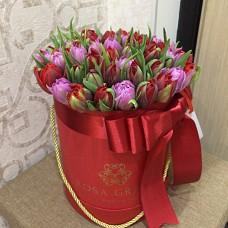 Тюльпаны Ред Принцесс и Ду Дабл Прайс в шляпной коробке (XS) до 49 шт.