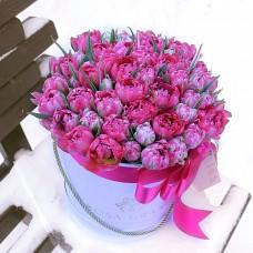 Тюльпаны Флеш Поинт в шляпной коробке (XS) до 49 шт.