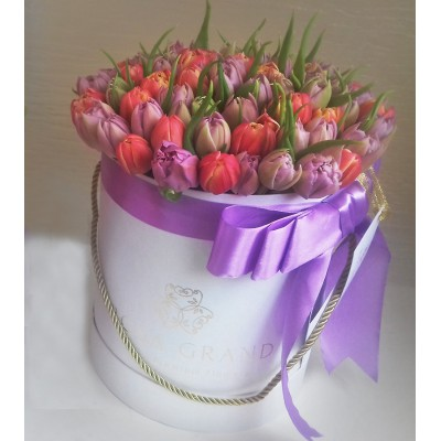 Тюльпаны пионовидные в цилиндре (XS) до 49 шт.