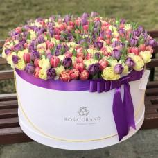 Тюльпаны пионовидные в цилиндре (XXL) от 319 тюльпанов