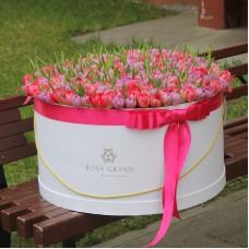 Тюльпаны флеш поинт и ду дабл прайс в шляпной коробке (XXL) от 319 тюльпанов
