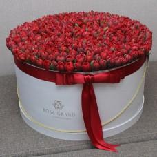 Красные тюльпаны в цилиндре (XXL) от 319 тюльпанов